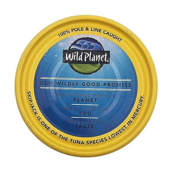 Wild Skipjack Light Tuna 4