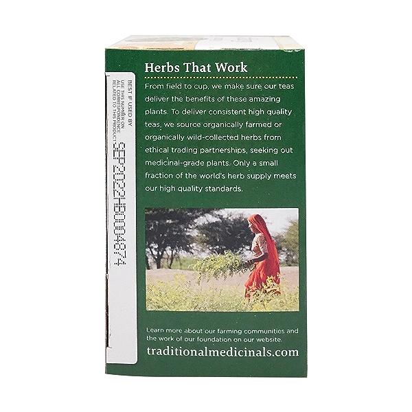 Organic Fair Trade Ginger Herbal Tea, 0.85 oz 3