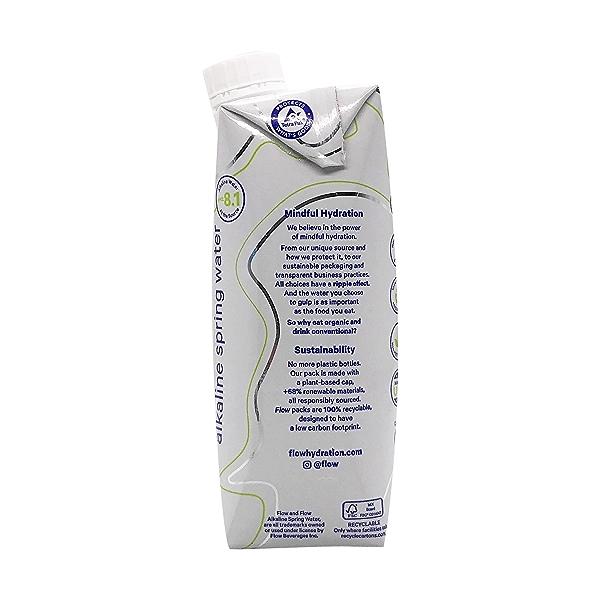 Organic Cucumber Mint Spring Water, 16.9 fl oz 4