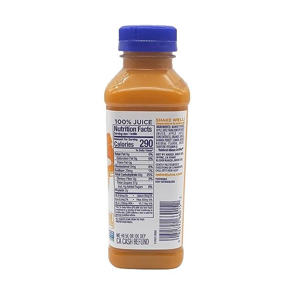 Mighty Mango Juice Smoothie, 15.2 fl oz 2