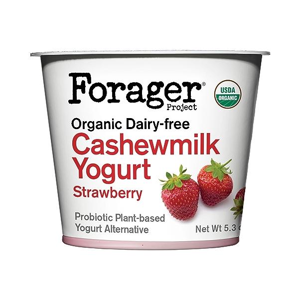 Organic Dairy-Free Strawberry Cashewmilk Yogurt, 5.3 oz 1