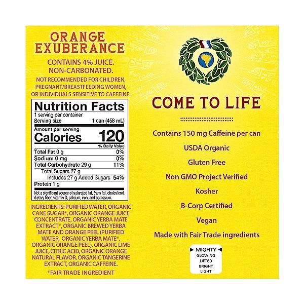 Organic Orange Exuberance Yerba Mate, 15.5 fl oz 2