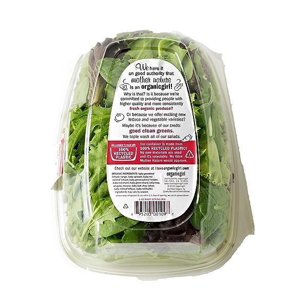 Baby Spring Mix, Salad 2