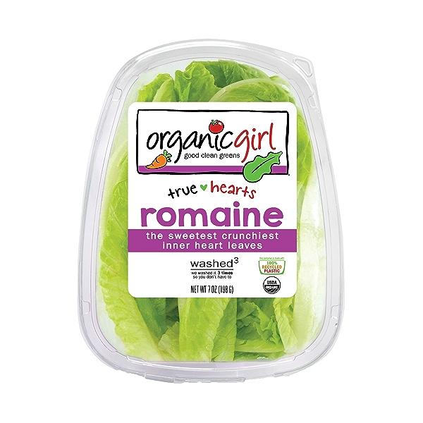 Romaine Heart Leaves, Salad 1