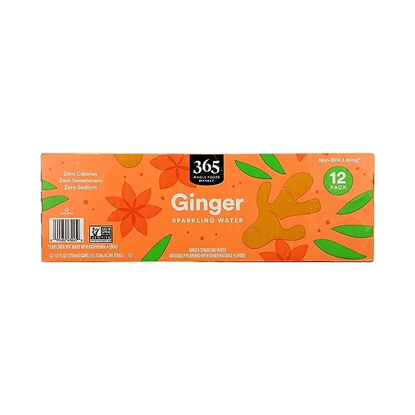 Ginger Sparkling Water 12pk, 1.1 gal 4