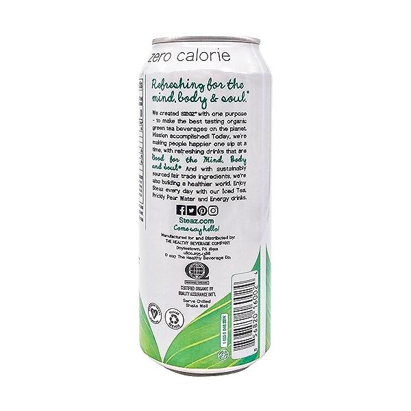 Peach Mango Iced Green Tea, 16 fl oz 3