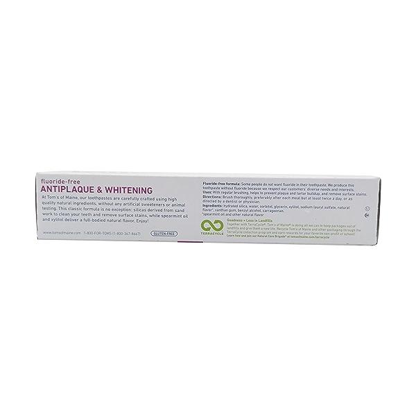 Spearmint Anti Plaque Gel Toothpaste, 4.7 oz 2