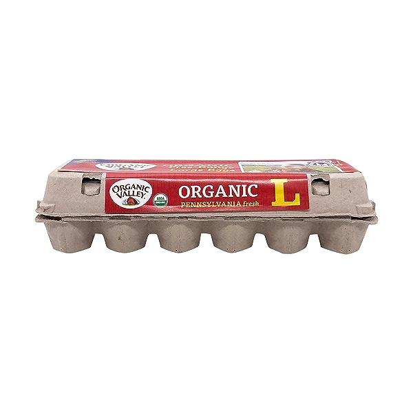 Organic Large Brown Eggs, 24 oz 3
