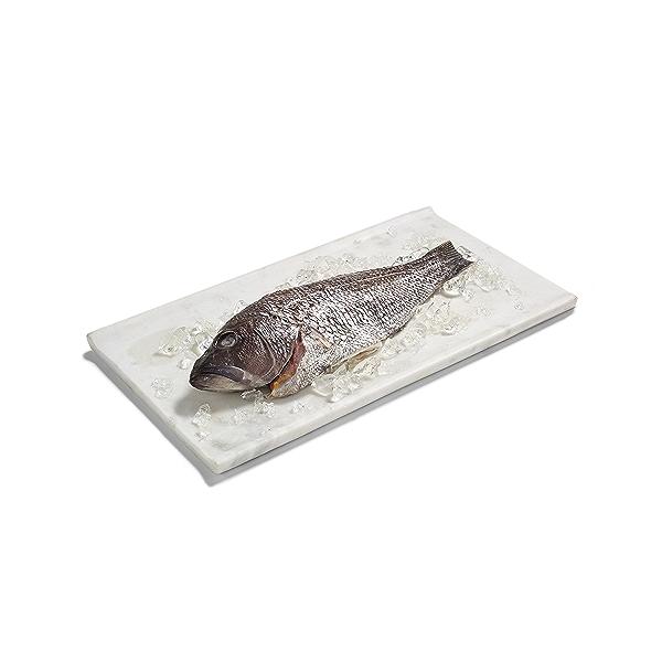 Black Sea Bass 1