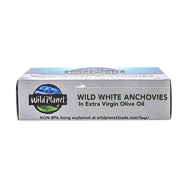 Wild Anchovies in Evoo 6