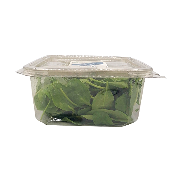 Organic Baby Spinach Salad 3