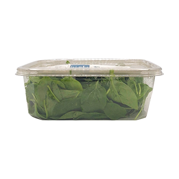Organic Baby Spinach Salad 4