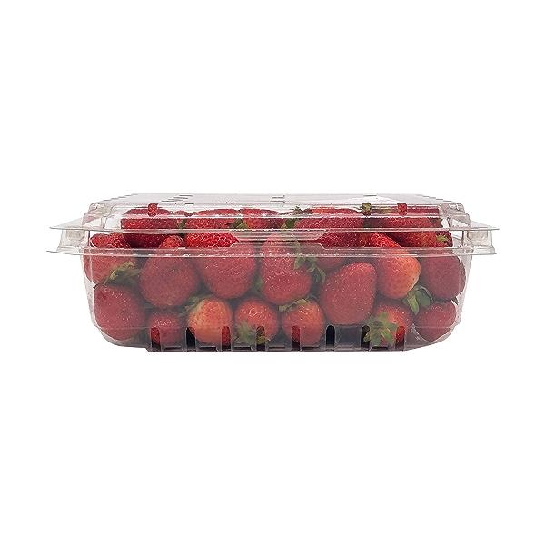 Organic Strawberries 3