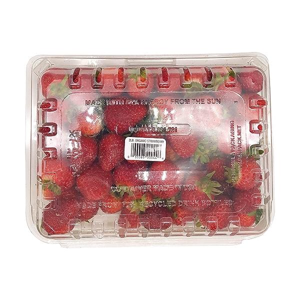 Organic Strawberries 2