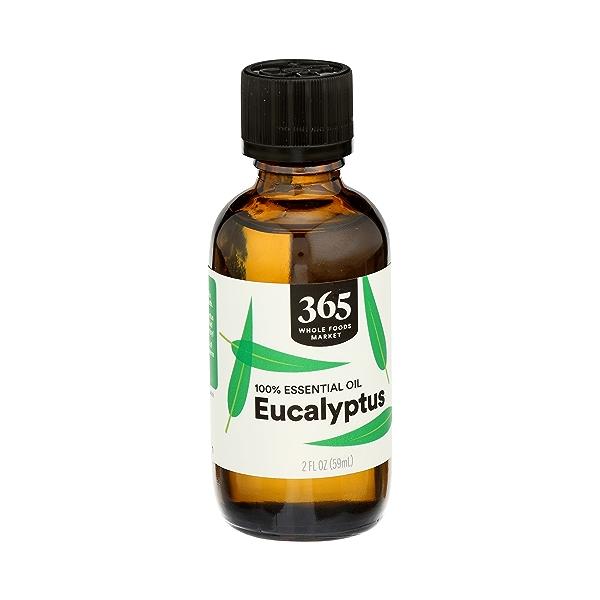 Aromatherapy 100% Essential Oil, Eucalyptus, 2 fl oz 2