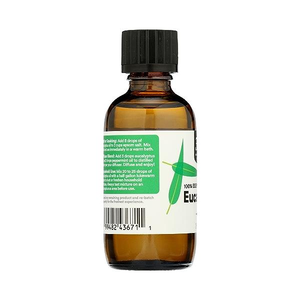 Aromatherapy 100% Essential Oil, Eucalyptus, 2 fl oz 5