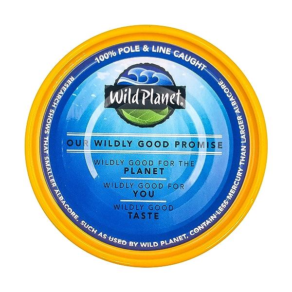 Wild Albacore Tuna 4