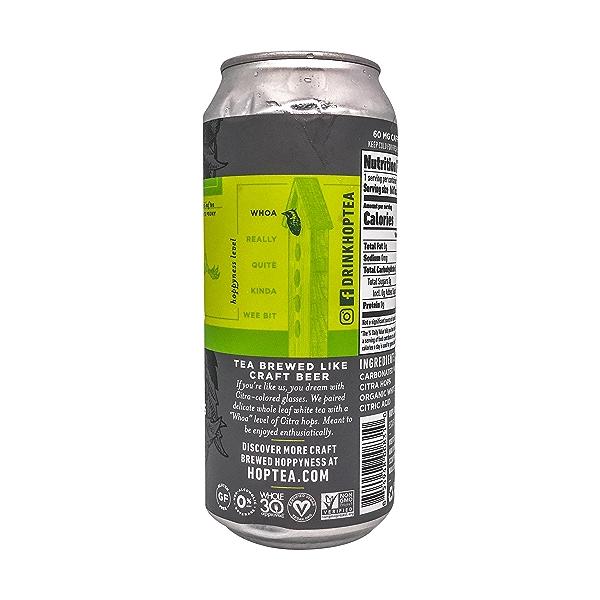 Citra Bomb One Sparkling Hop Tea, 16 fl oz 2