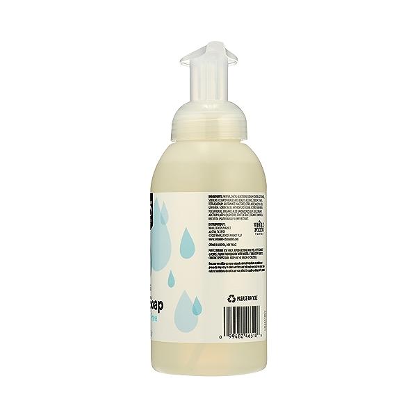 Foaming Hand Soap, Fragrance Free, 12 fl oz 8