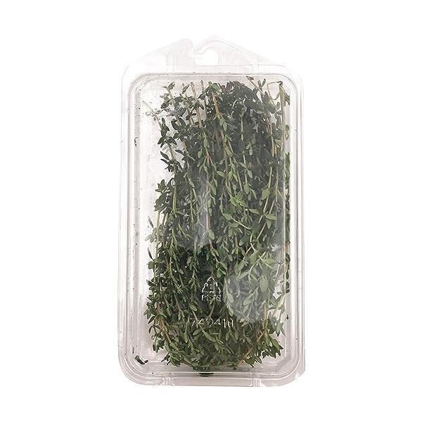 Organic Thyme 2