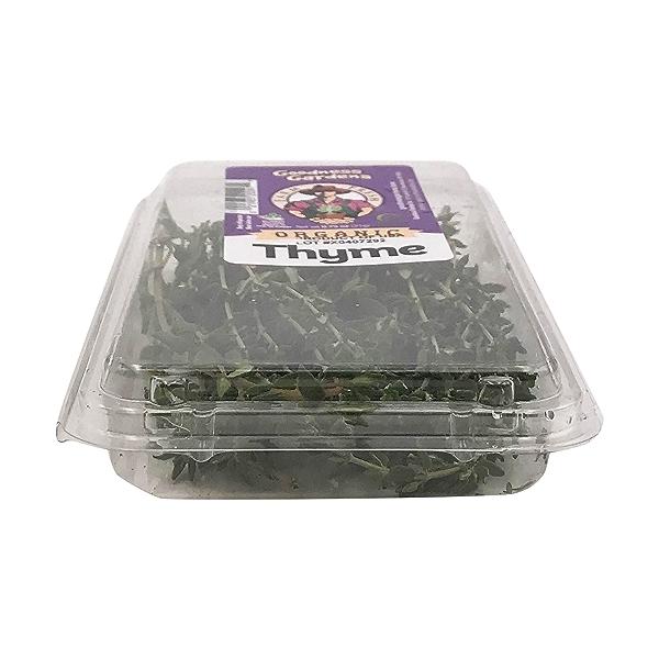 Organic Thyme 5