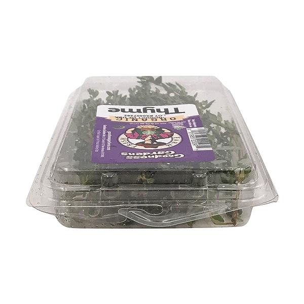 Organic Thyme 6