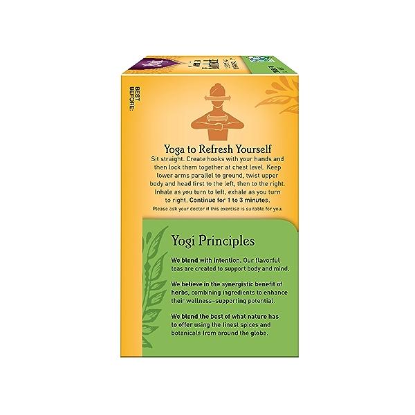 Green Tea Kombucha, 1.12 oz 3
