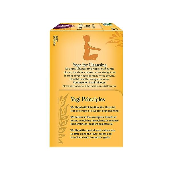 Roasted Dandelion Spice DeTox, 0.85 oz 3