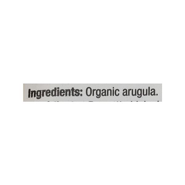 Produce - Organic Packaged Baby Arugula 7
