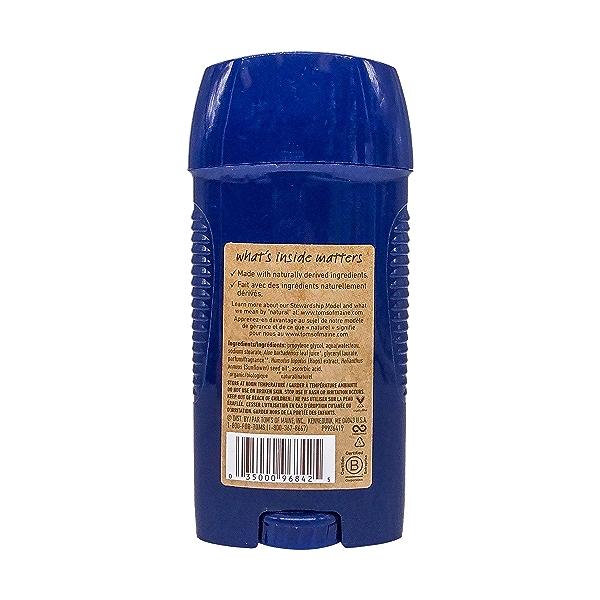 Men Mountain Spring Deodorant Stick, 2.8 oz 2