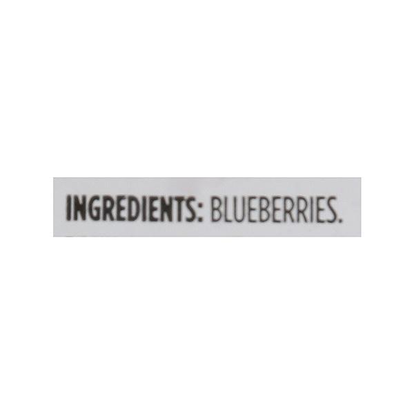 Frozen Fruit, Blueberries 8
