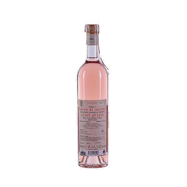 Ramoro Pinot Grigio Terre di Chieti IGP, 750 ml 2