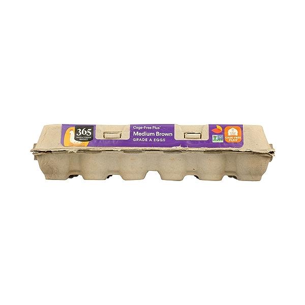 Grade A Eggs Cage-Free Plus Medium Brown (18 Count), 31.5 oz 6