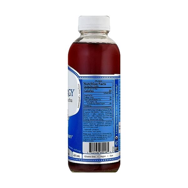 Gingerberry 16oz, 473 ml 8