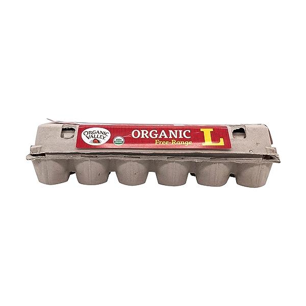 Organic Large Brown Eggs, 24 oz 1