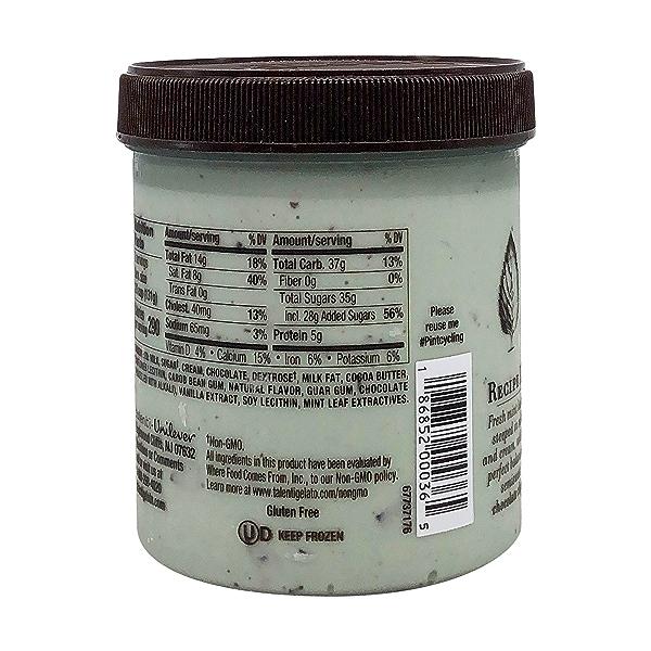 Mediterranean Mint Gelato, 1 pint 5