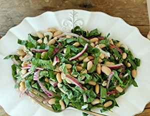 Overhead shot of bowl white bean and spinach salad recipe with red onions