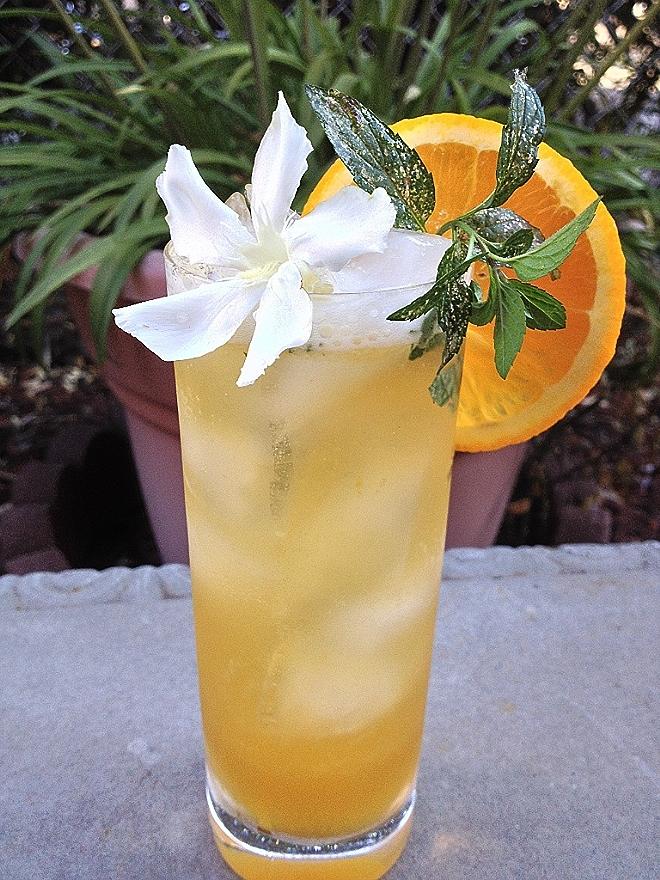 Orange-Ginger Brewjito