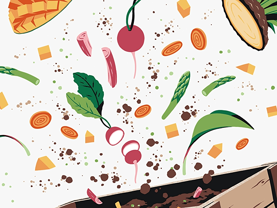 illustration of spring vegetables being composted