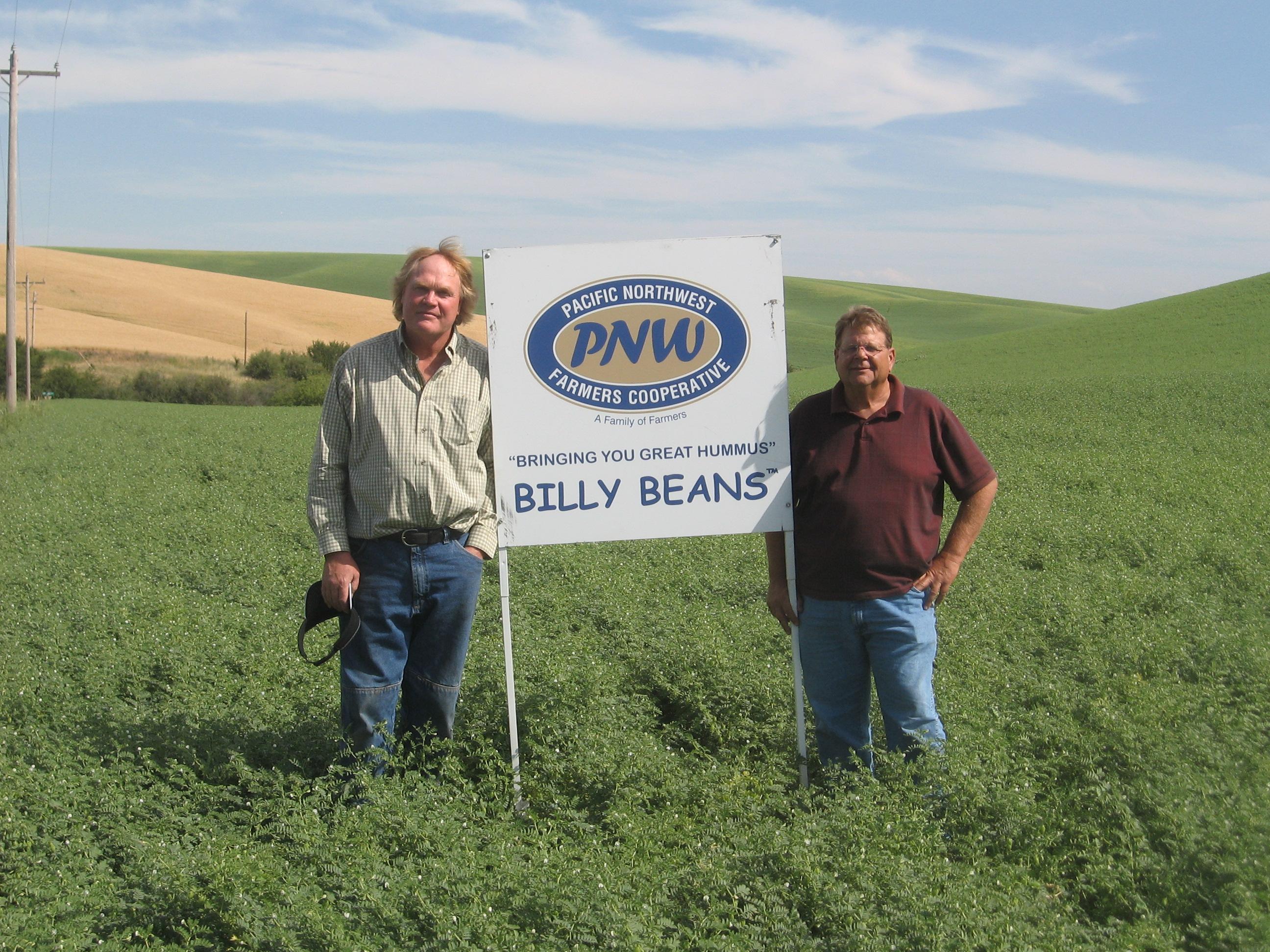 Billy Beans