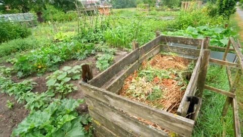 Composting Turning Trash Into Treasure Whole Foods Market