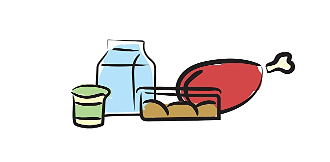 Illustration of meat, milk, yogurt and eggs stored on refrigerator shelves.