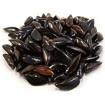 Product image of Fresh Washington Mussels