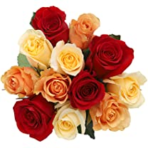 Product image of Rainbow Rose Dozen