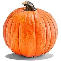 Product image of Pie Pumpkins