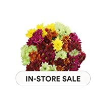 Product image of Pom Fall Rainbow Bouquet
