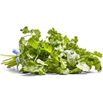 Product image of Cilantro Bunch