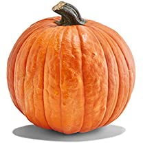 Product image of Pumpkins and Gourds
