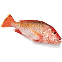 Product image of Snapper Whole Red