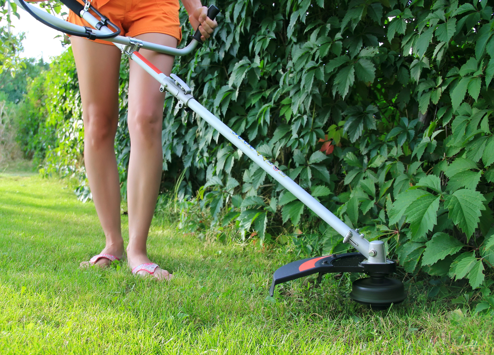 Best Lawn Edgers: Get the Neatest Lawn on the Block